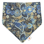 CLEARANCE Smart Bottoms Bandana Bib