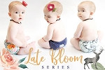 LKC Late Bloom Series (AIOs & Swaddles)